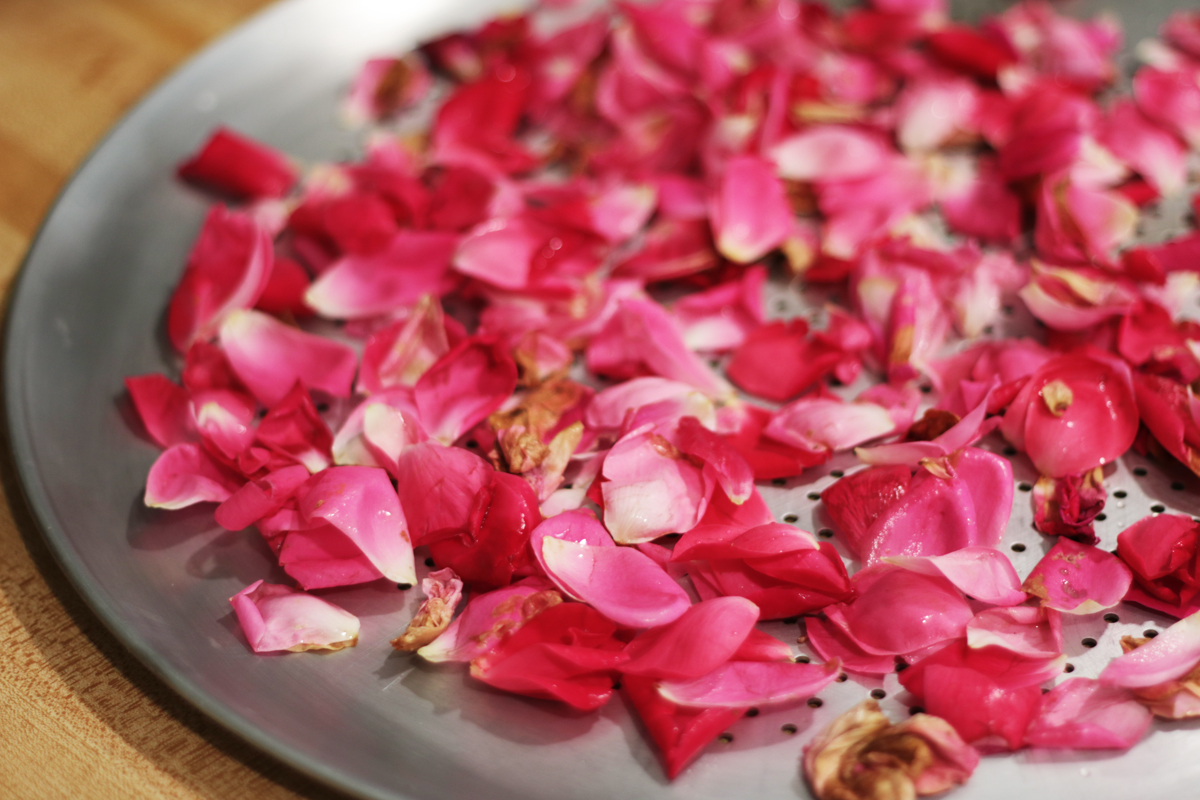 Drying Rose Petals 2 - Our Urban Farmstead