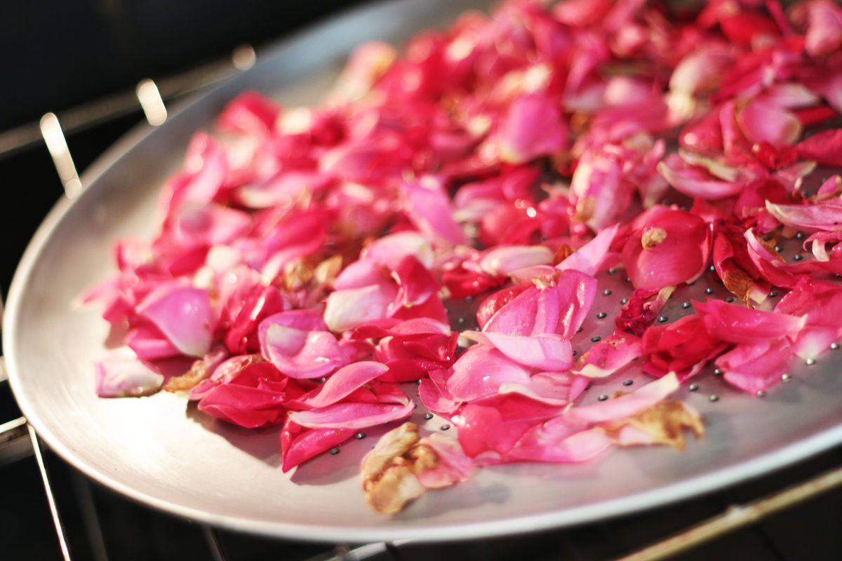 Drying Rose Petals 3 - Our Urban Farmstead
