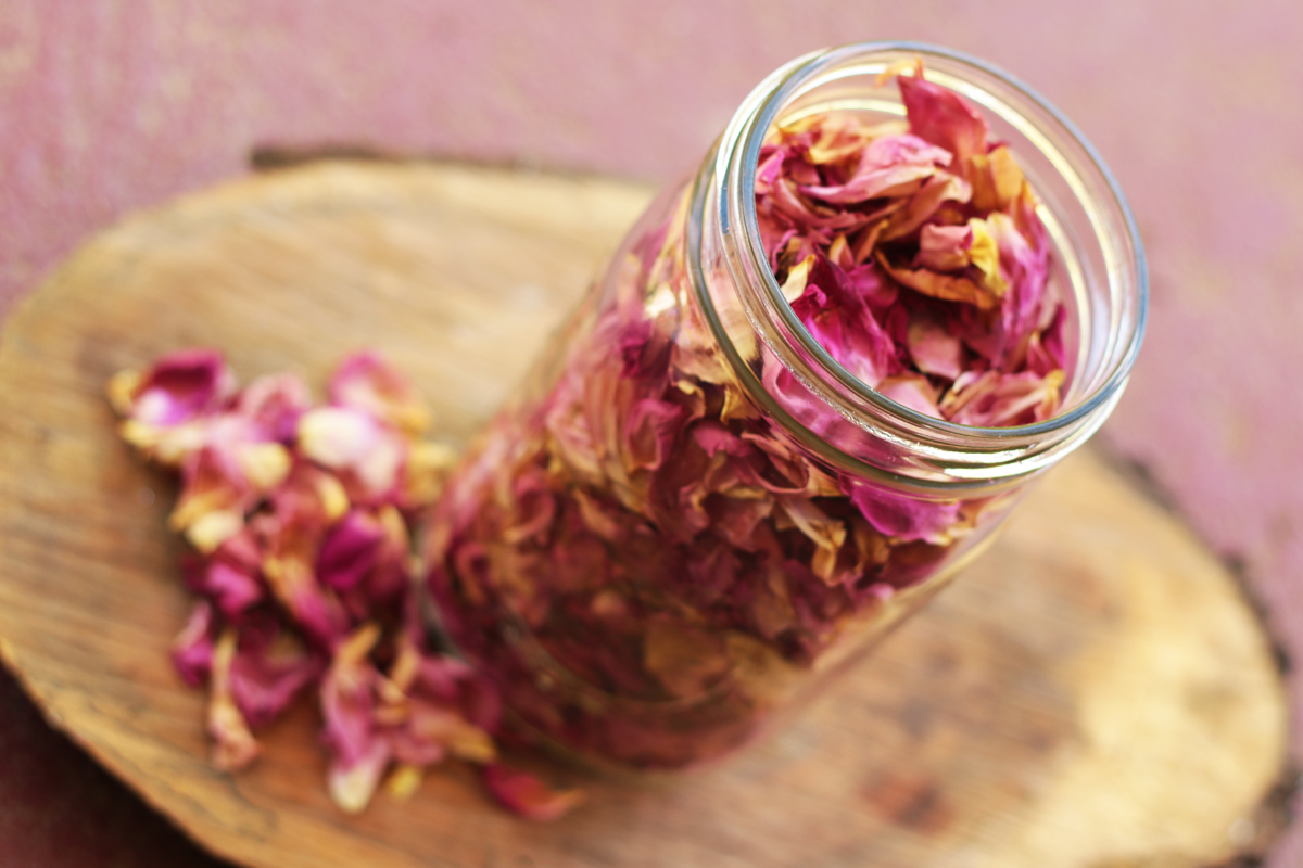 Drying Rose Petals 7 - Our Urban Farmstead